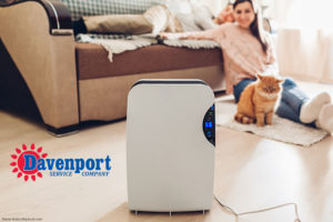 Olathe humidity dehumidifier