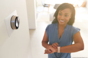 Olathe Smart Thermostat Installation